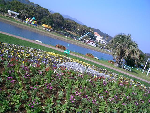 w081009-Aoshima3.JPG