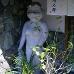 福岡で佐賀呼子グルメを堪能 ~ 中洲の河太郎で、イカ三昧ランチ♪