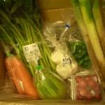 Oisixで野菜嫌い克服大作戦!? ~ おいしい野菜でリッチな菜食にチャレンジ♪