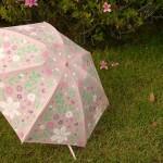 カワイイだけじゃない? ミニラボの折りたたみ傘のお手並み拝見