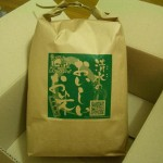 【速報】 今年の新米食べたよ! ~ 南九州の新米は早い☆