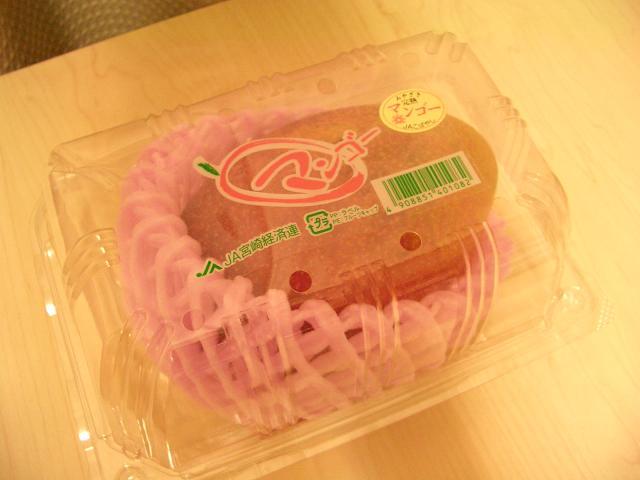 w110903-Hyakushotai14.JPG
