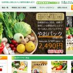 やお九州の野菜おいしかったよー♪ 初回限定野菜セットの中身詳細&特においしかったものなど。