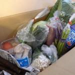 九州野菜セット「やおパック」8月中旬の内容 ~ 佐土原なす、うまー♪
