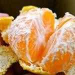 日本で1番早く食べられる宮崎日南の「極早生みかん」を食べた♪